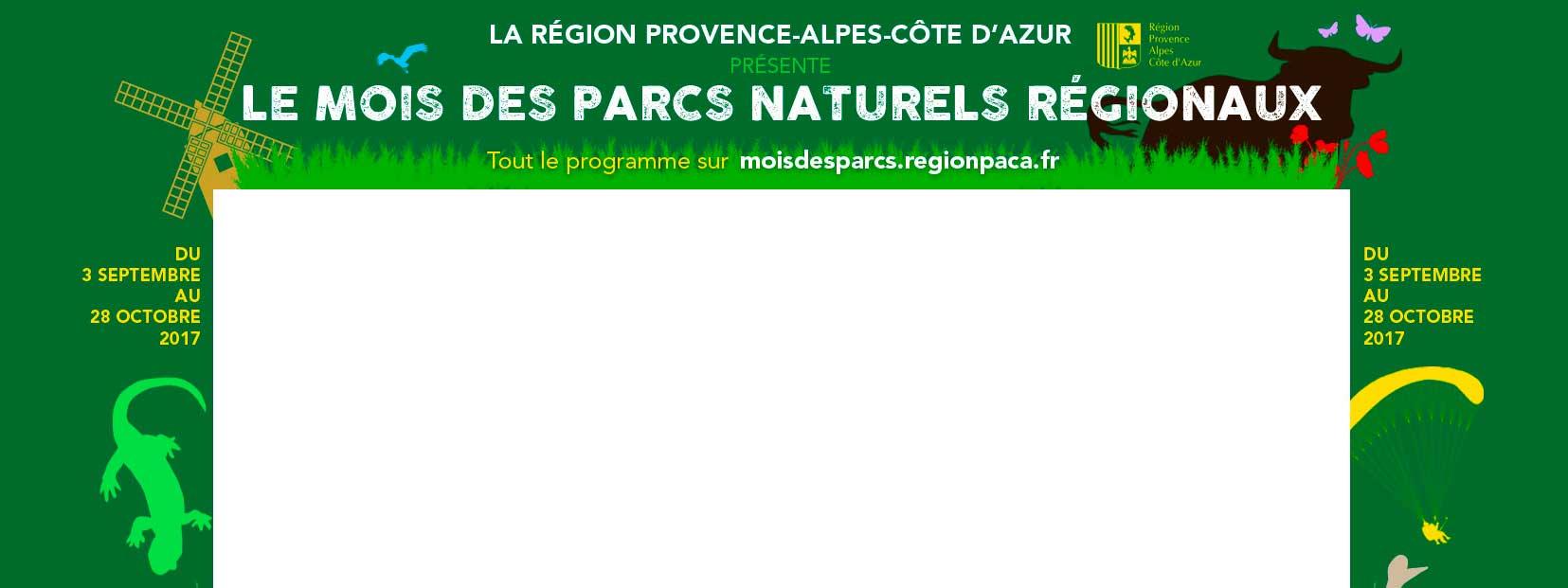 Habillage de site 20 minutes et Cnews // Région PACA