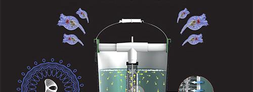 Flyer-21x10cm-reacteur-a-plancton